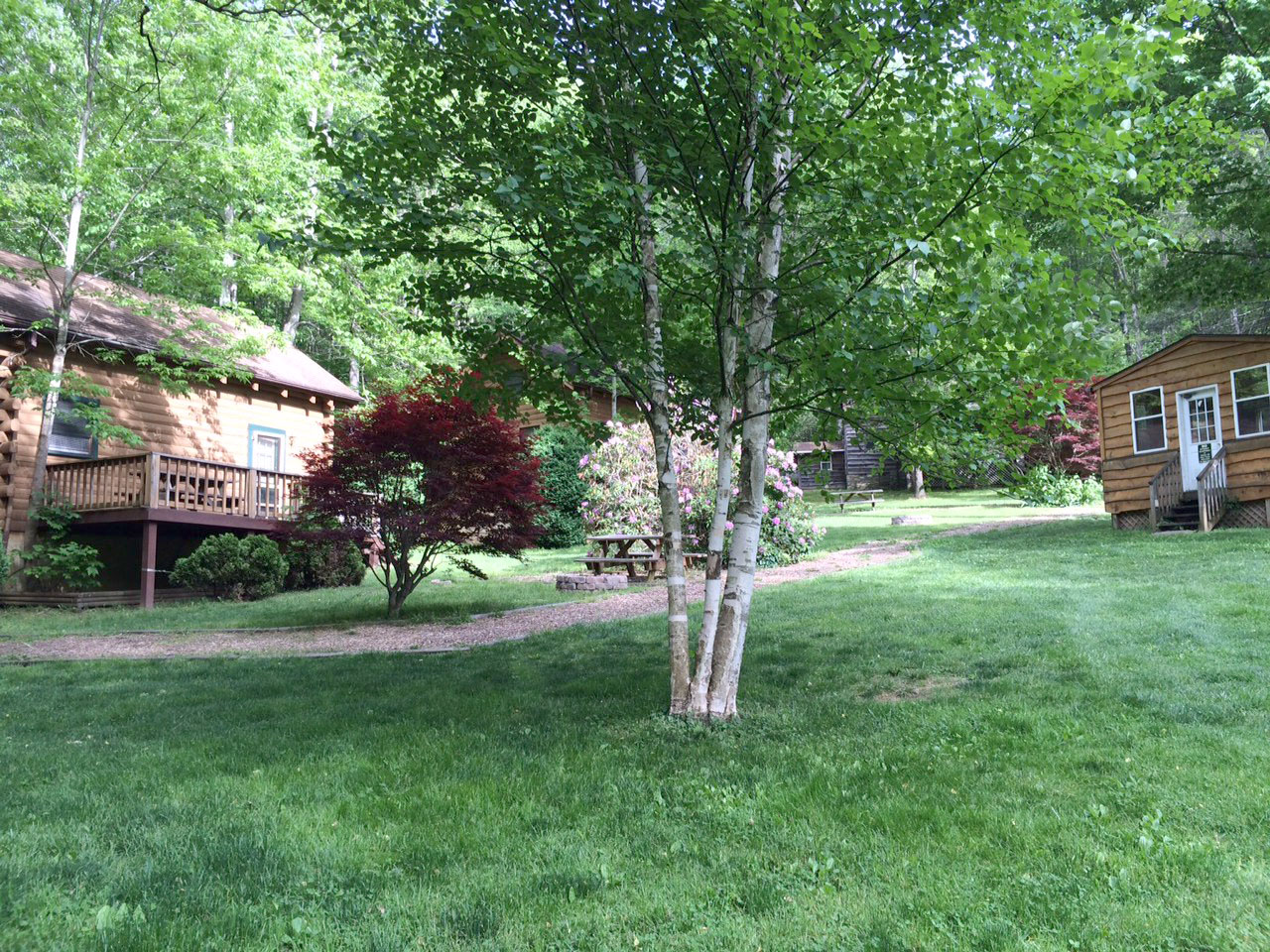 nc maggie cabins no vacation rentals rental cabin valley